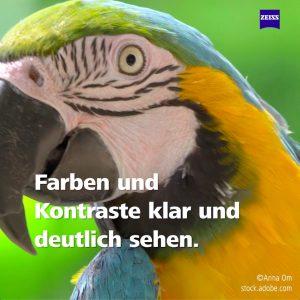 i.Scription® Technologie_Bilder_Papagei_Kachel01